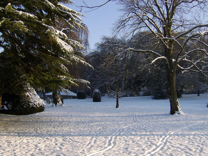 castle park snow scene trees sunlight 2014