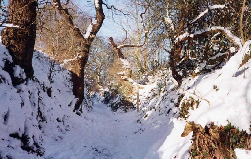 sandstone trail snow in frodsham