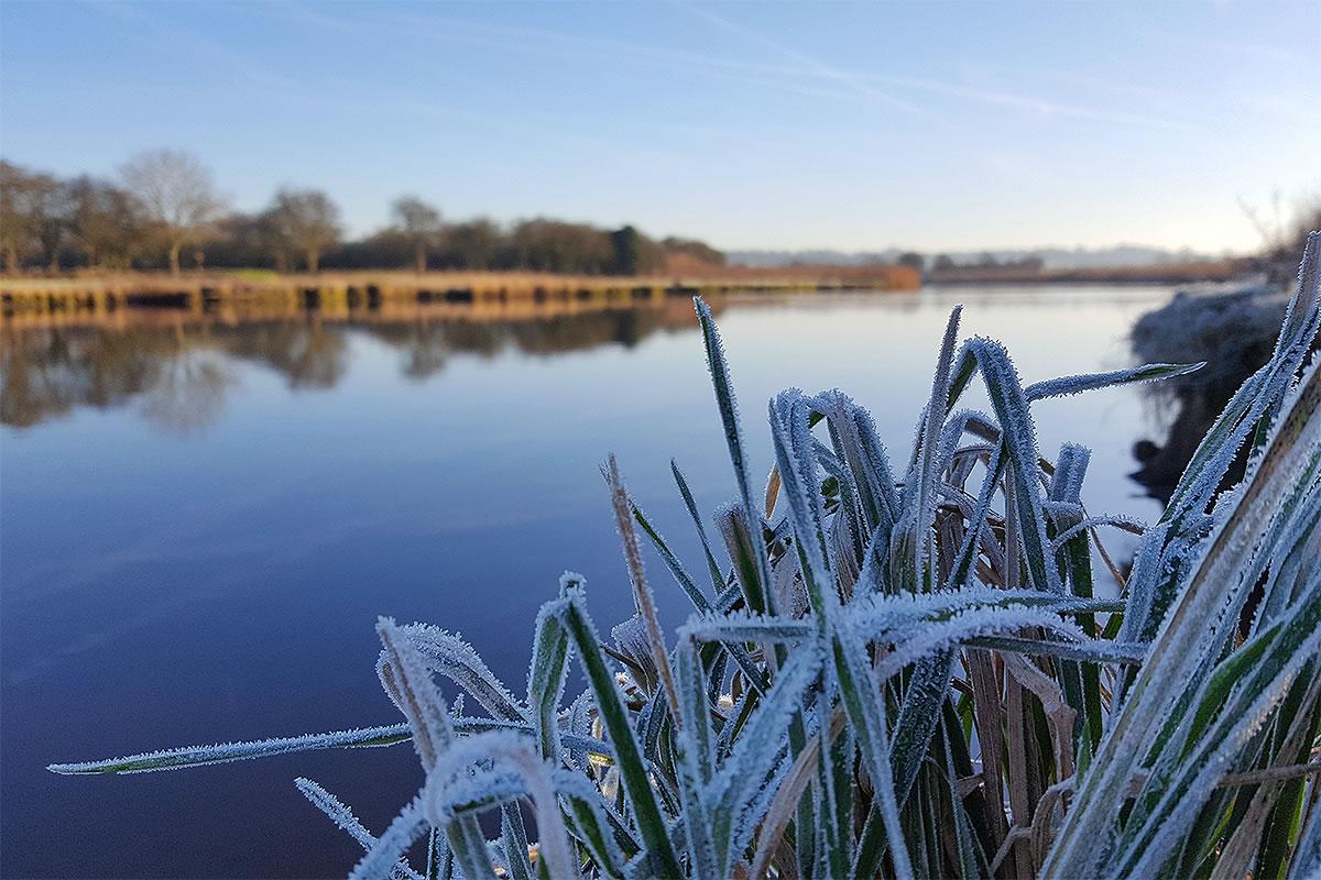 river weaver frodsham winter 2017 frosty grass