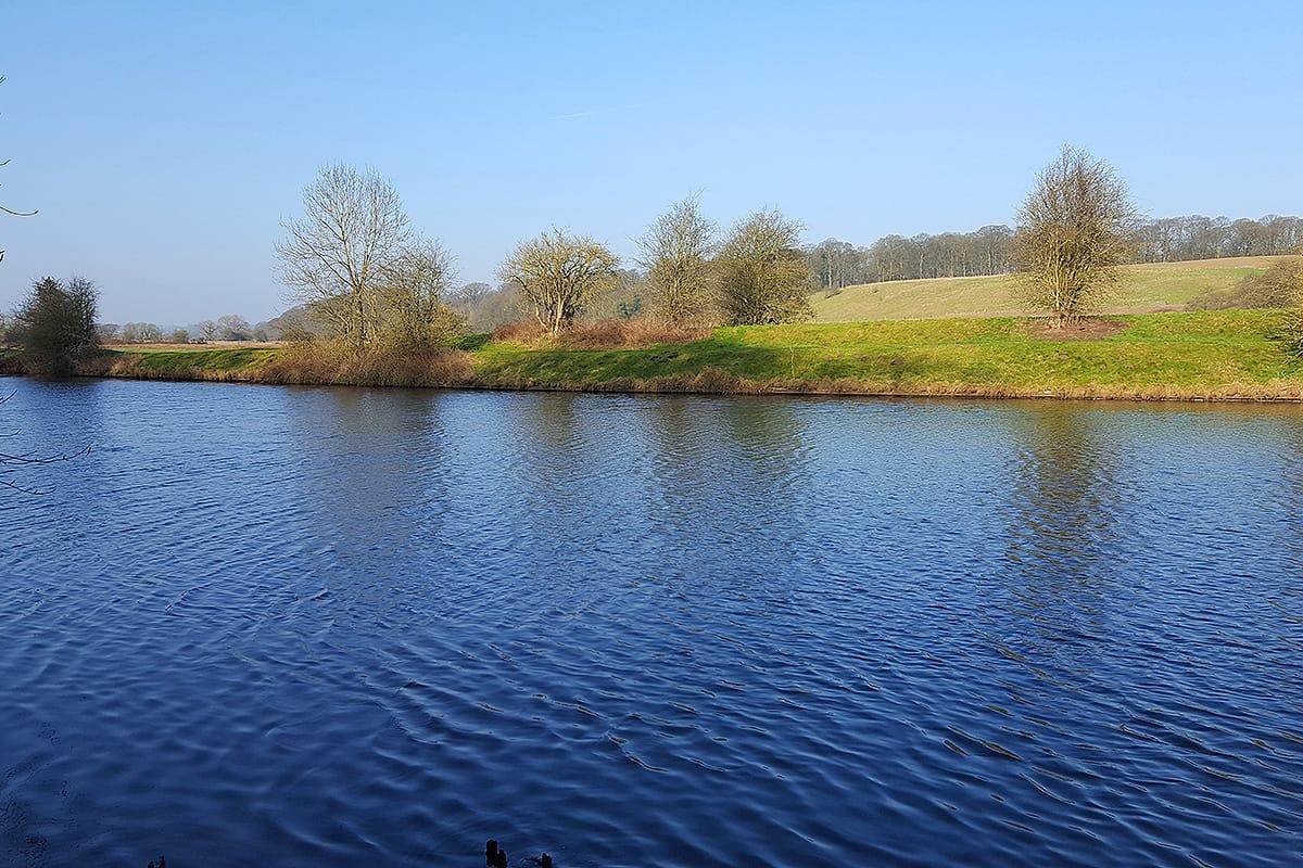 The River Weaver looking across to Blackamoor Wood.