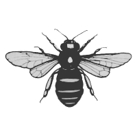 Big Bees Breakfast Club Meeting 6 September 2016