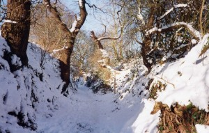sandstone trail snow in frodsham