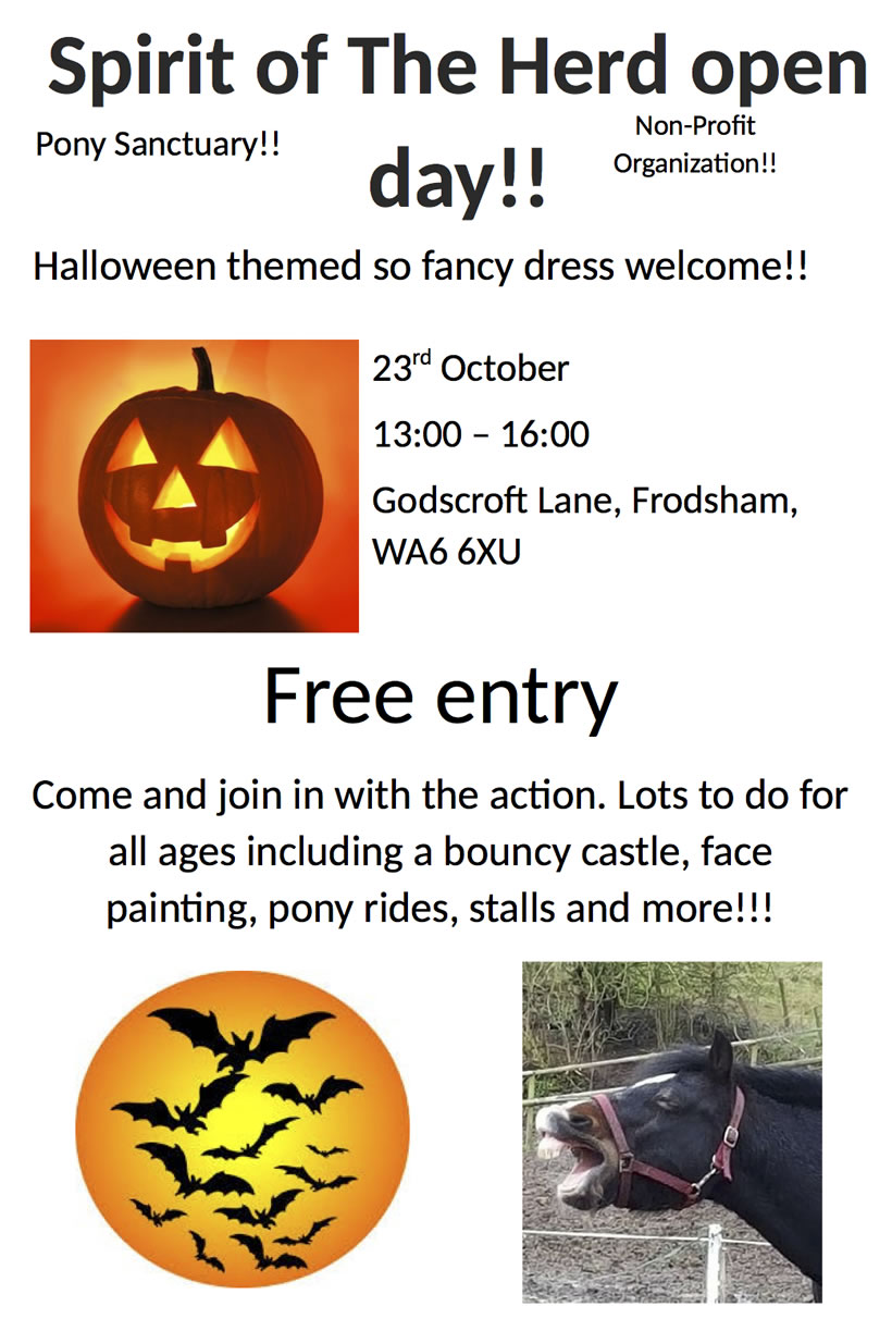 pony sanctuary halloween party poster