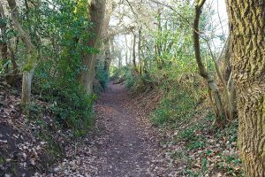 Path 74 from Hob Hey Wood up to Townfield Lane in Frodsham